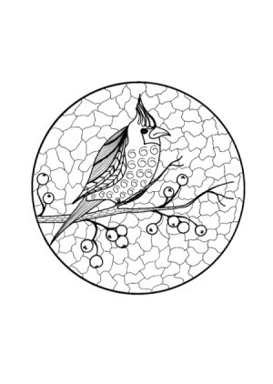 A coloring page showing a cardinal on a tree branch.