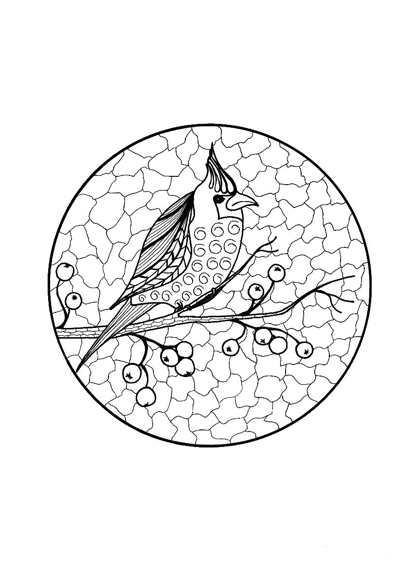 coloring pages robin tree - photo#47
