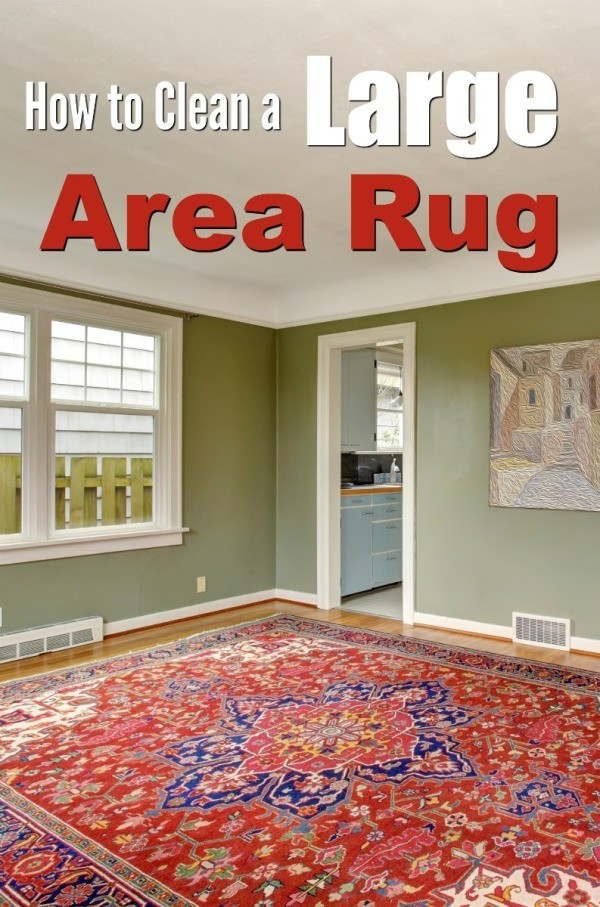 Cleaning A Large Area Rug Thriftyfun