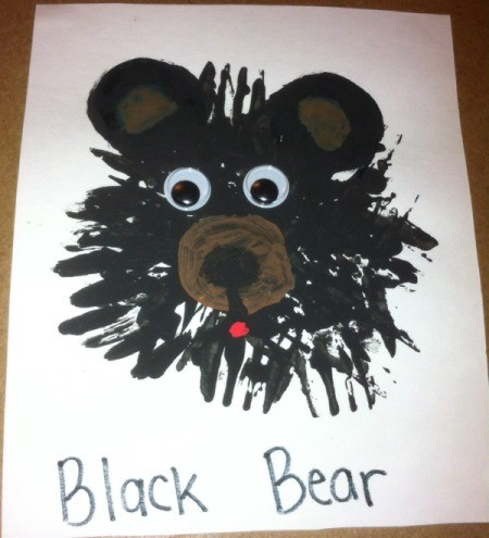 Fork Bears - example of black bear