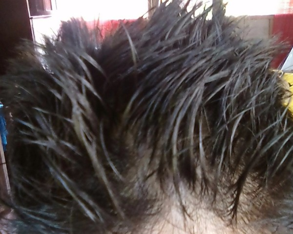 Hair Sticking Up Because Of Egg Whites.
