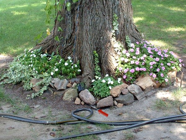 Here Is A Picture Of Flower Beds Lined With Shower Pan Liner The Protects Tree Trunk And Makes Maintenance So Easy It Helps Keep Weeds