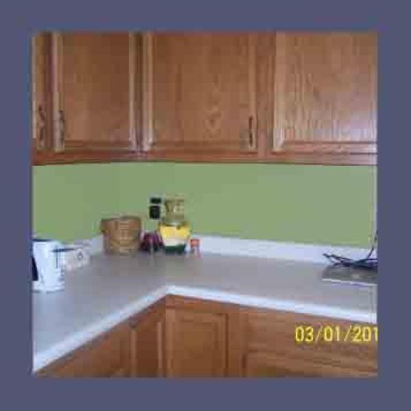 paint color advice for kitchen with oak cabinets thriftyfun