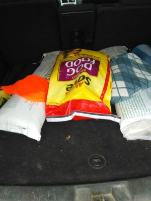A large dog food bag to add weight for winter driving.