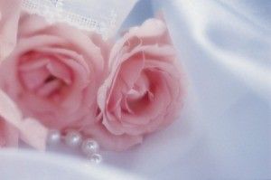 Pink silk roses.