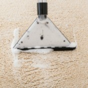 A carpet cleaner picking up soapy water from the carpet.