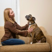 A woman and her dog on a couch.
