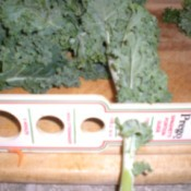A pasta measuring stick with holes, with a kale leaf inserted into one of the holes.
