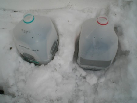Starting Seeds in the Snow - planted milk jugs in the snow