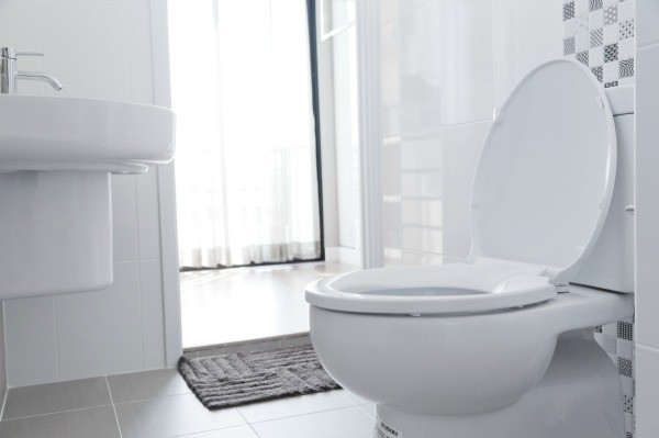 Keeping Toilets Clean at a Vacation Home | ThriftyFun