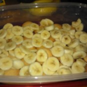 cut bananas on wafers in container