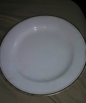 Information and Value of Homer Laughlin Dinnerware - white with gold trim