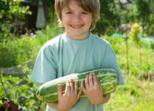 Boy holding a large marrow squash.
