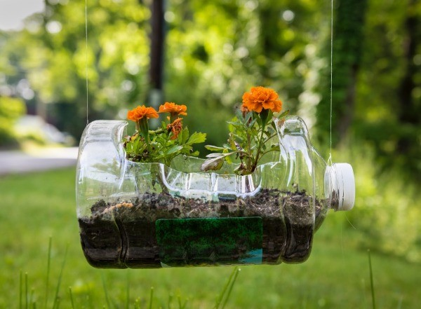 Plastic Bottle Planter