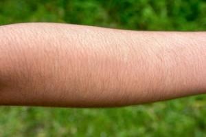 A hairy forearm.