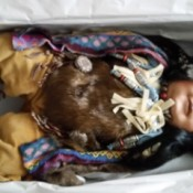 Value of Cathay Porcelain Doll - native American costumed doll