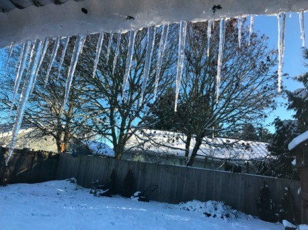 Icicles on a roof (Hillsboro, OR)