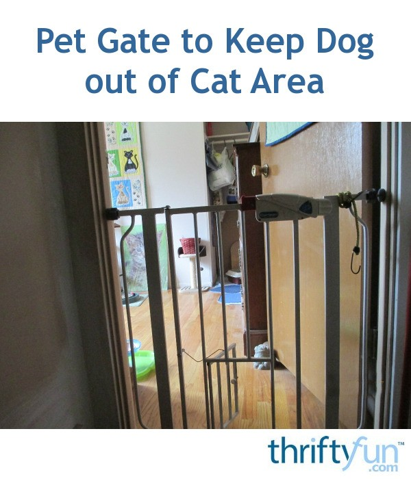 Pet Gate To Keep Dog Out Of Cat Area Thriftyfun