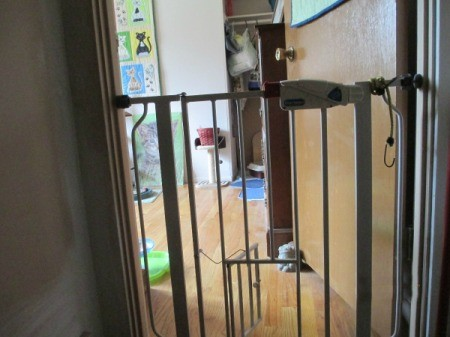 A pet gate with a small cat door.