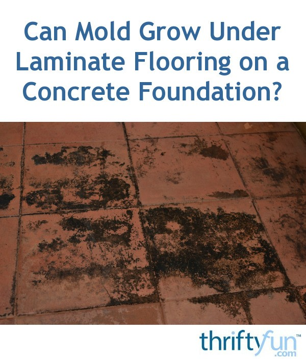 Can Mold Grow Under Laminate Flooring On A Concrete Foundation