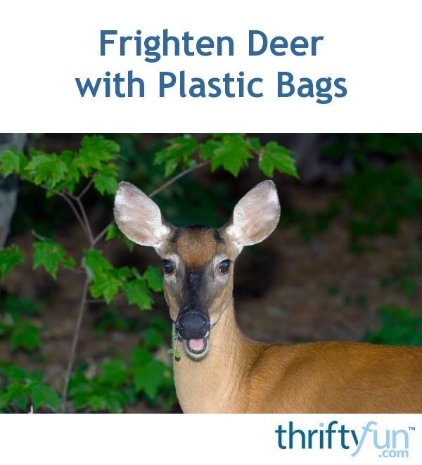 frighten deer with plastic bags
