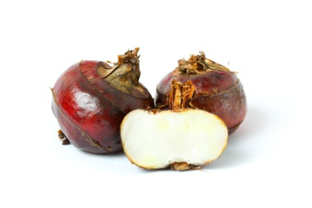 Fresh water chestnuts, whole and cut in half.
