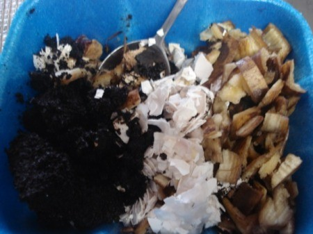 Homemade Fertilizer from Kitchen Scraps - bowl with shells, peels, and grounds
