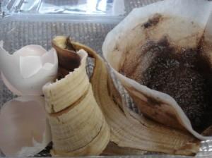 Homemade Fertilizer from Kitchen Scraps - original scraps before prepping