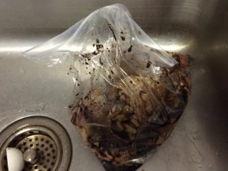 chicken marinading in plastic bag