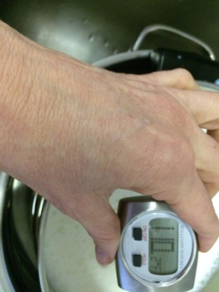 hand holding thermometer in warmed milk