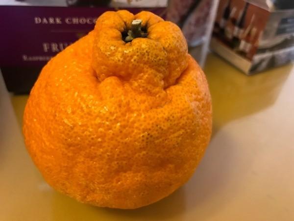 Harry and David Fa ctory Tour (Medford, OR) - orange