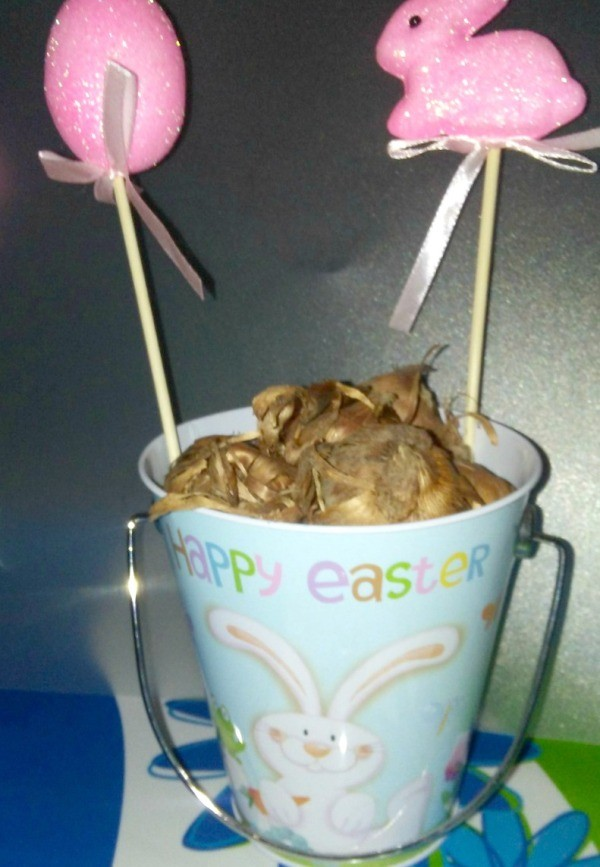 Easter basket ideas thriftyfun gardeners easter basket easter decorated flower pot with bulbs and two easter plant pokes negle Choice Image