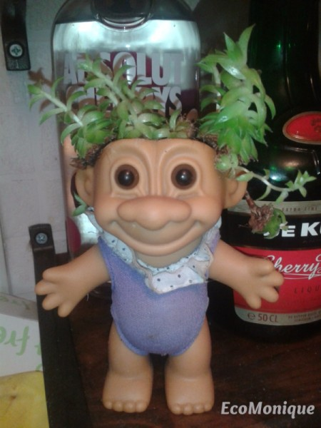 A troll toy with a succulent growing out of the head.