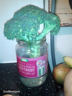 A head of broccoli in a jar of water.