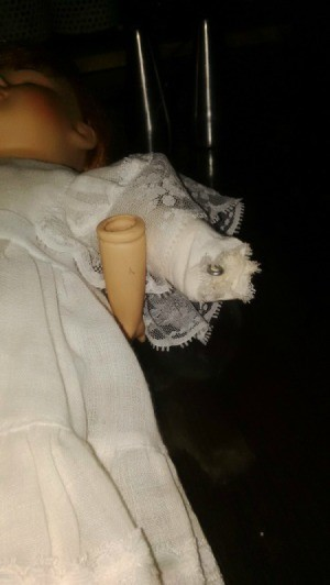 A detached arm on a porcelain doll.