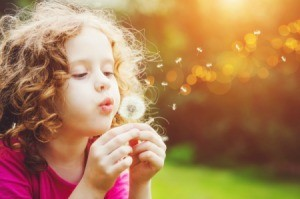 A girl blowing dandelion seeds in the sun.