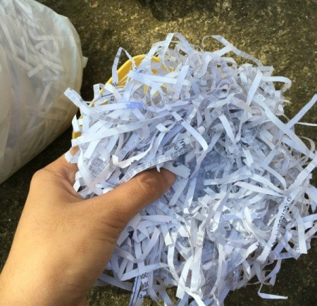 Shredded Paper Nest