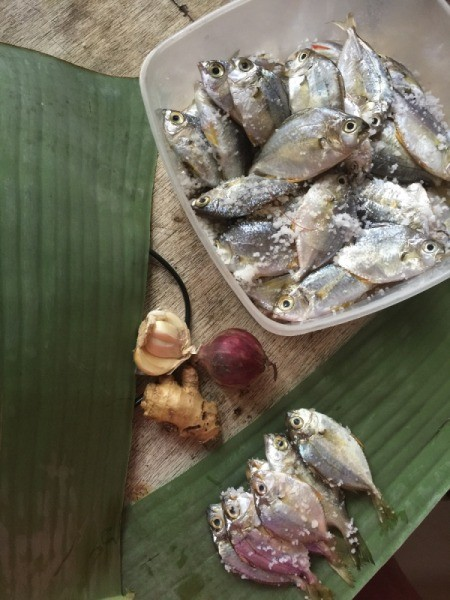small fish and banana leaves
