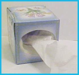 Put Toilet Paper in a Tissue Box