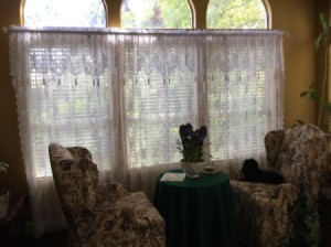 Living Room Curtain Advice - lace curtains