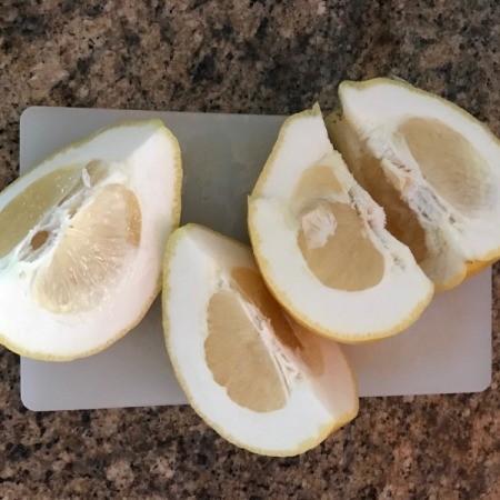 A cut up moldy grapefruit.