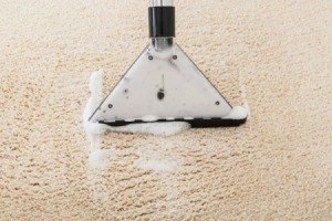 Close up of carpet cleaner washing carpet