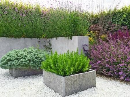Rock floor garden, plants in concrete planters