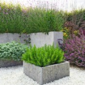 Rock floor garden, plants in concrete planters