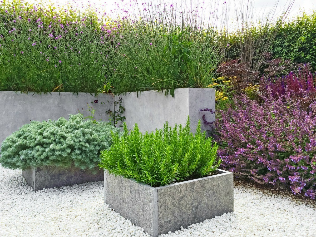 Planting A Garden On Top Of Concrete Thriftyfun
