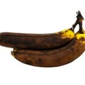 2 overripe bananas on white background.