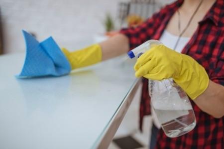 Cleaner Spray Bottle