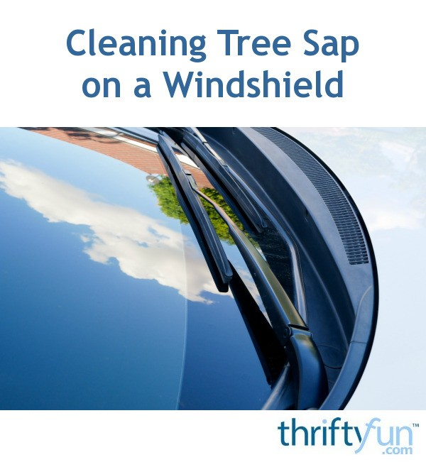 Cleaning Tree Sap on a Windshield | ThriftyFun