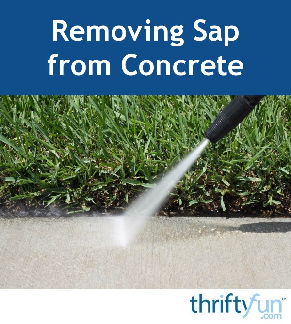 Removing Sap From Concrete Thriftyfun