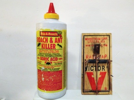A bottle of roach and ant killer and a mousetrap to keep rodents away.